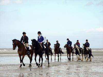 chevaux-sur-plage1
